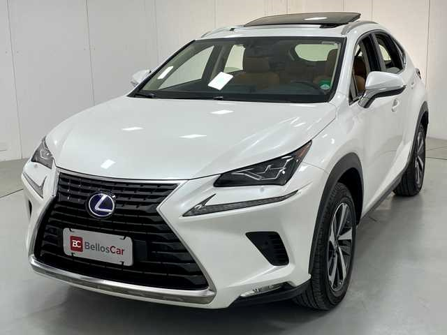 //www.autoline.com.br/carro/lexus/nx-300h-25-luxury-16v-gasolina-4p-4x4-automatico/2019/curitiba-pr/14924820